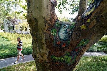 China-Shanghai-Park-Baum-Loch-Verschönerung (CN) China-Shanghai-Park-Baum-Loch-Verschönerung (CN) China-Shanghai-Park-Baum-Loch-Verschönerung (CN)