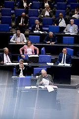 Alice Weidel  Alexander Gauland  Bundestag