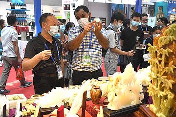 CHINA-GUANGXI-NANNING-ASEAN-EXPO(CN)