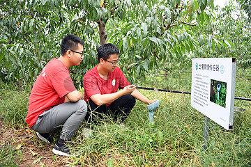 China-Peking-Future Orchard-College-Studenten (CN)