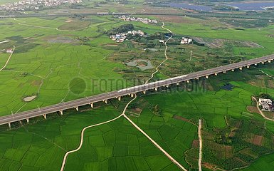 China-Guangxi-Bullet-Zug-Paddy-Feld (CN)