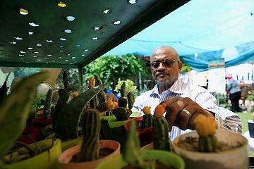 Sudan-Khartoum-Cactus und sukkulente Ausstellung