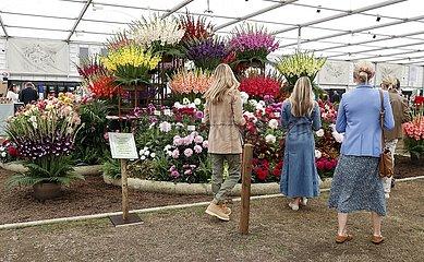 Britain-London-Rhs Chelsea Flower Show