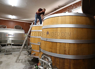 Frankreich-Mandelieu-la-Napoule-Winemaking