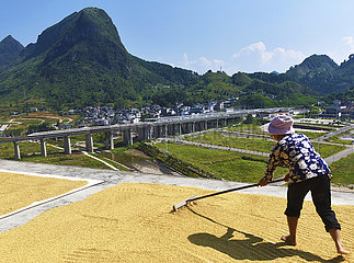 China-Landwirte-Harvest Festival-Landschaft (CN)