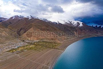 CHINA-TIBET-NAGQU-HIGHLAND BARLEY-HARVEST (CN)