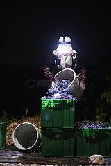 CHINA-NINGXIA-YINCHUAN-GRAPE & WINE INDUSTRY (CN)