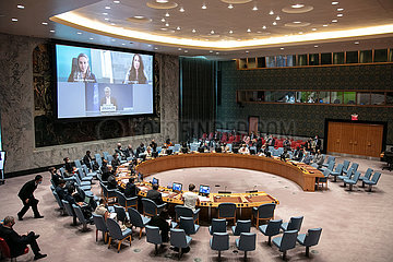 UN-Security Council-Middle East-Revoy-Briefing