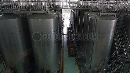China-Xinjiang-Wine Enterprise (CN)