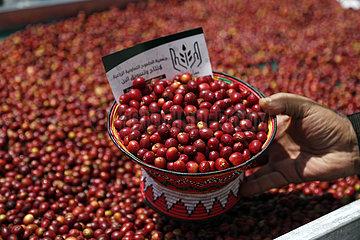Jemen-Sanaa-Coffee-Fair