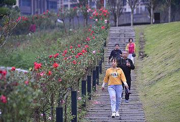 CHINA-CHONGQING-WATERSIDE WALKWAY (CN)