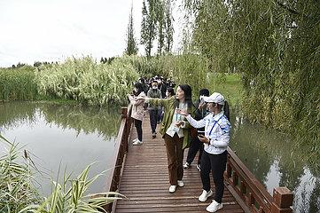 (COP15) China-Yunnan-Kunming-Baofeng-Halbinsel Wetland (CN)