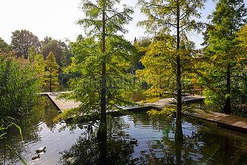 Waldsee  Grugapark  Essen  Nordrhein-Westfalen  Deutschland