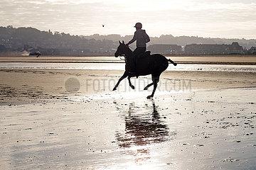 Deauville  Silhouette: Polopferd wird am Strand galoppiert