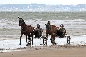 Deauville  Trabrennpferde bei der Morgenarbeit am Strand