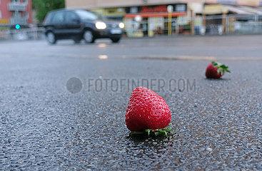 Berlin  Deutschland  reife Erdbeeren liegen auf nassem Asphalt