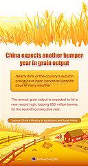 [GRAPHICS]CHINA-GRAIN-OUTPUT (CN)