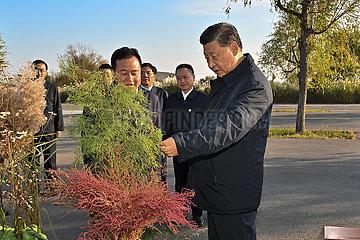 China-shandong-dongying-xi Jining-Yellow River Estuary-Inspektion (CN)