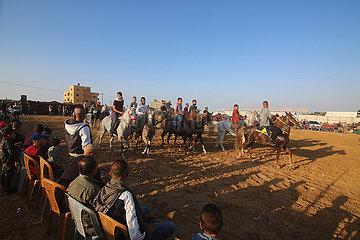 Midest-Gaza-Rafah-Kamel und Pferderennen